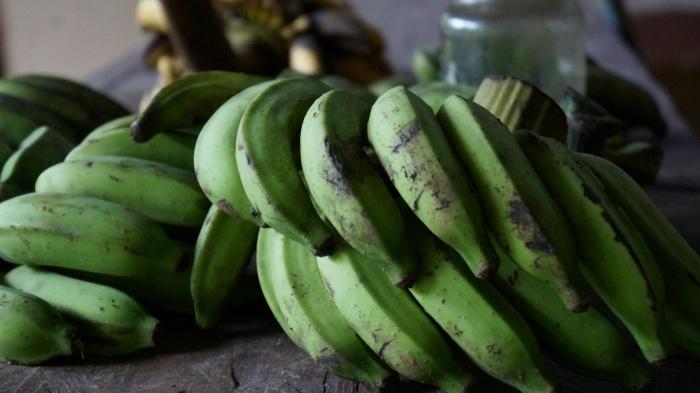 Carne mechada con concha de plátano