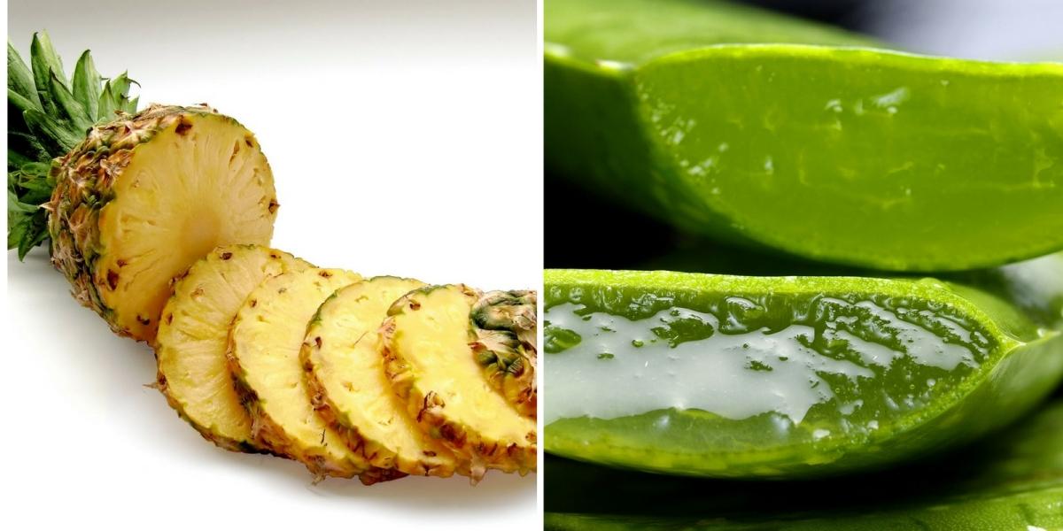 Batido de Aloe Vera y Piña para depurar el organismo